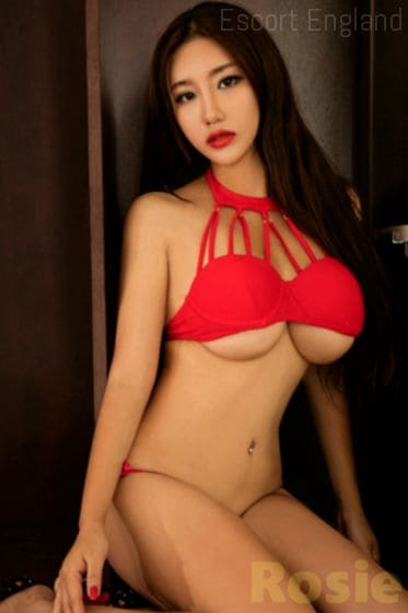 English, 28 years old Rosie escort girl in England - Image 1